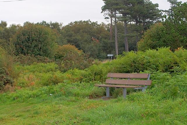 Seat Near Red Gate