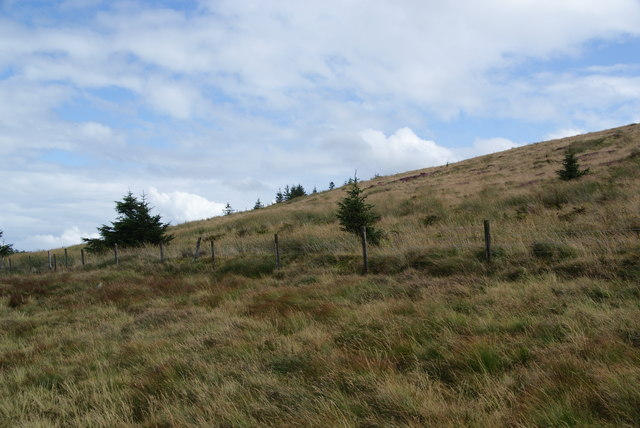 Former forest above Bwlch Pennant