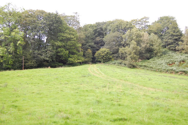 The Dane Valley Way, approaching Gig Hall
