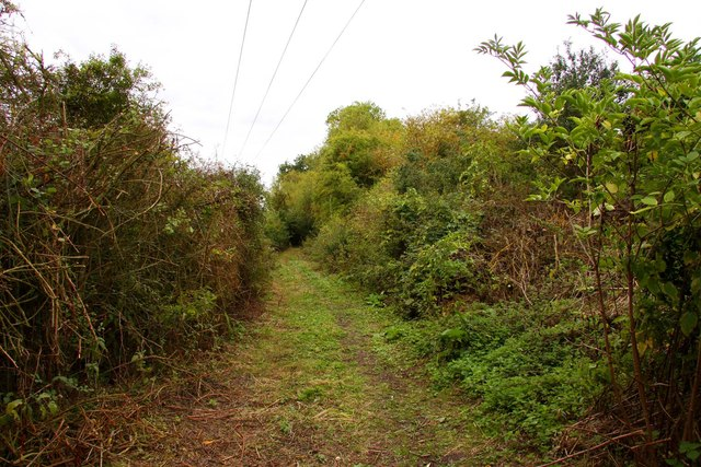 Bridleway by the canal