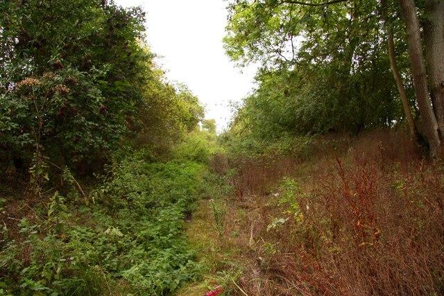 The former Wilts & Berks Canal near Drayton