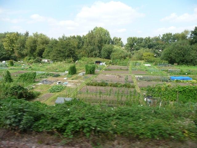 West Berkshire : Allotments
