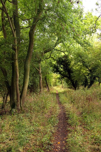 Bridleway by the former canal