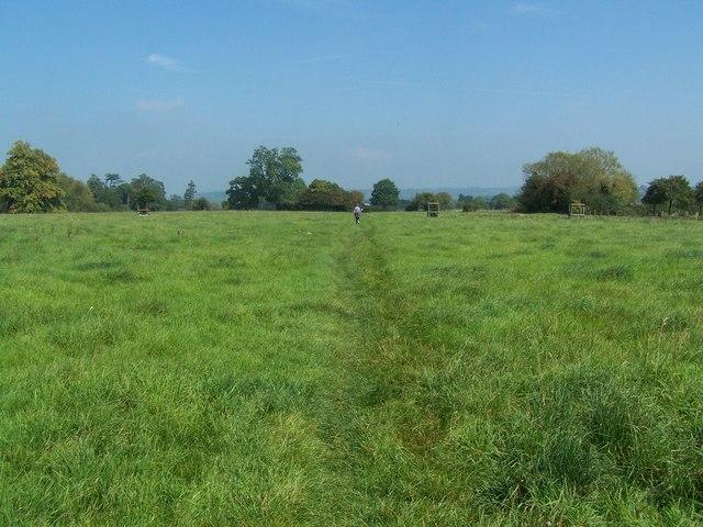 Footpath To Baltonsborough