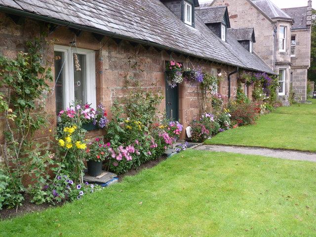 Cottages on Duke Street, Golspie