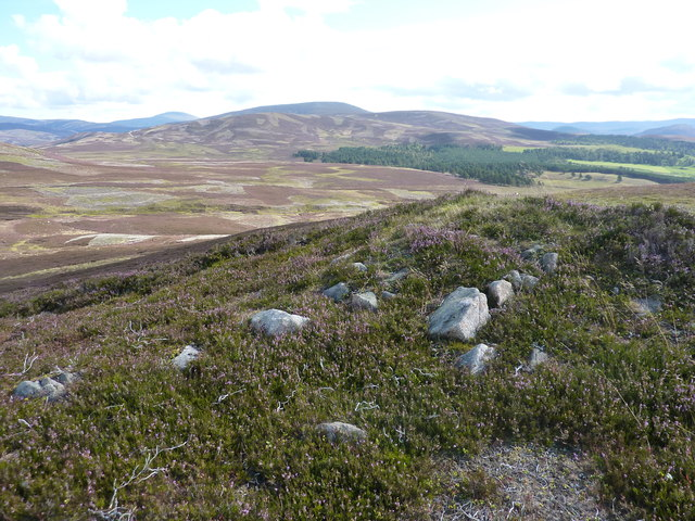 From the unnamed 514m shoulder, looking across the moorland surrounding the Crathie Burn