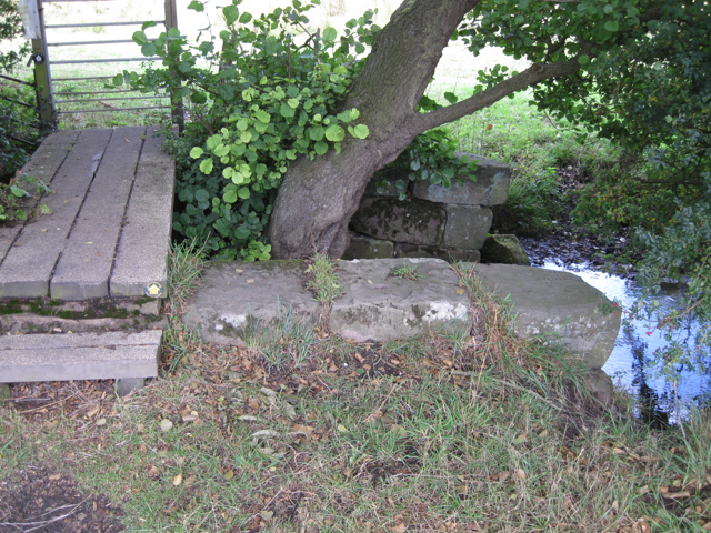 Masonry either side of a brook