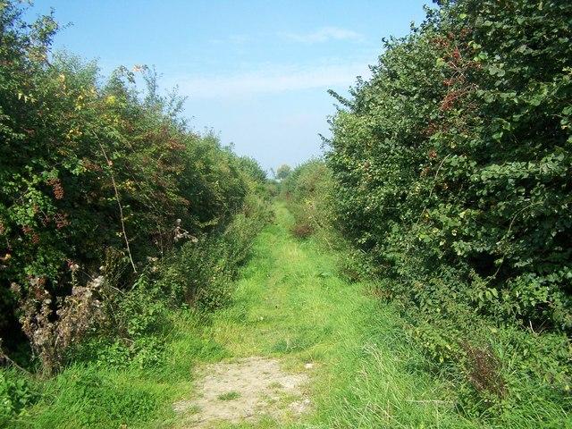 Footpath Off Blind Lane