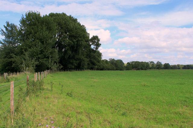 2011 : Field north east of Sherrington