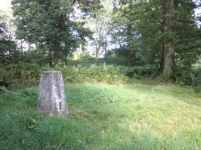 Trig point on Aconbury Hill