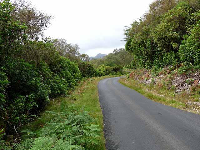 Road by Loch Uisg