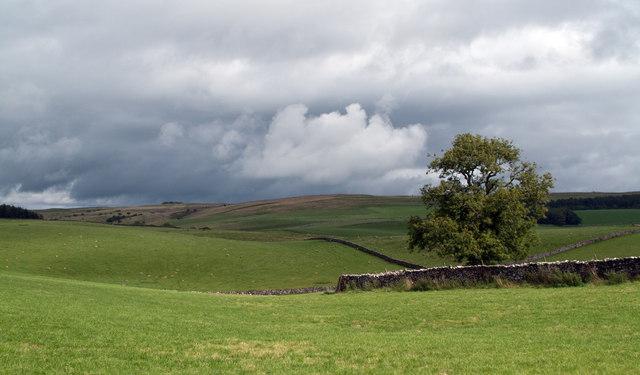 Fields near to Ravenstonedale