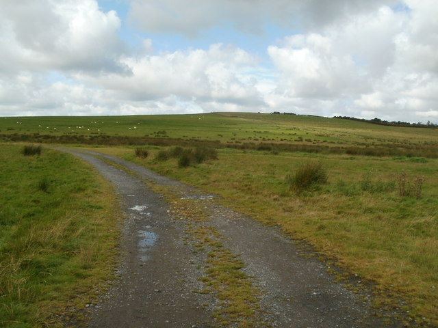 Track through grazing land near Coelbren