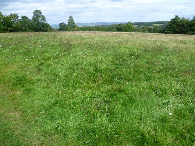 Field at Emmetts Garden