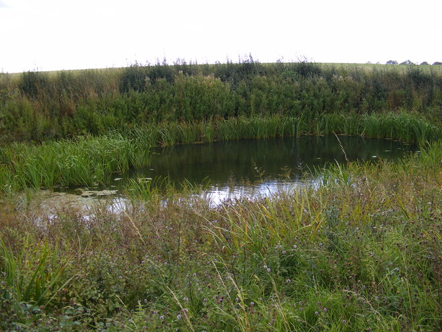 Farm Pond opposite Letheringham Hall