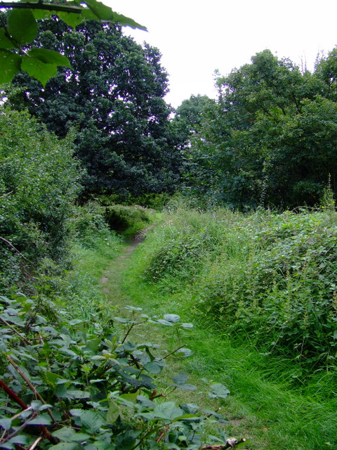 Footpath by the Grand Union Canal