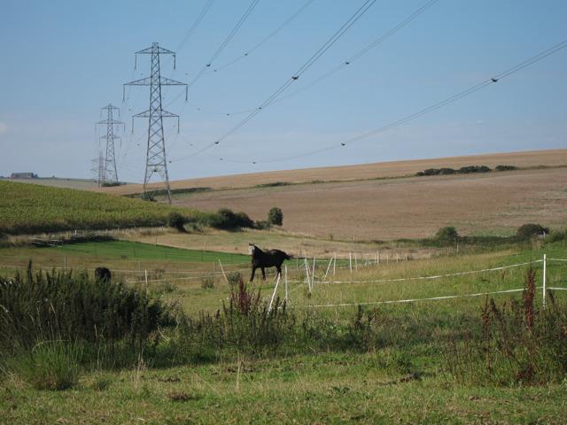 Fields north of Mileoak Barn