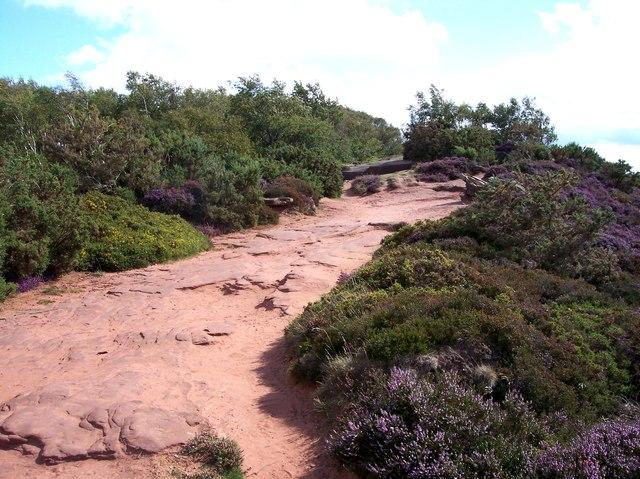 Sandstone path on Thurstaston Hill