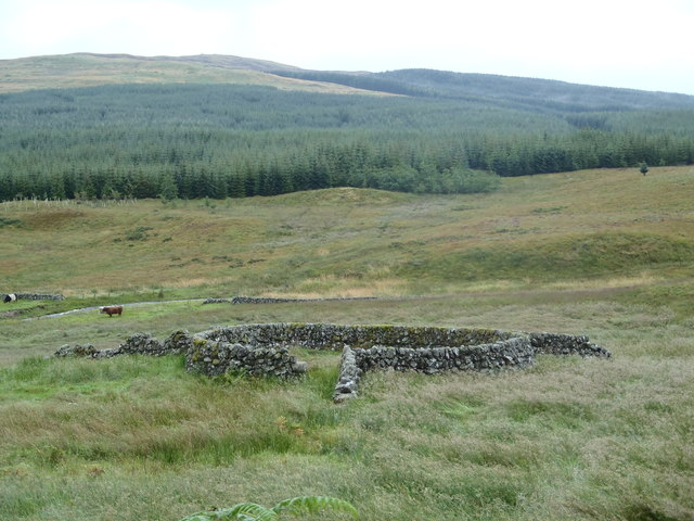 Sheepfold near Holmhead