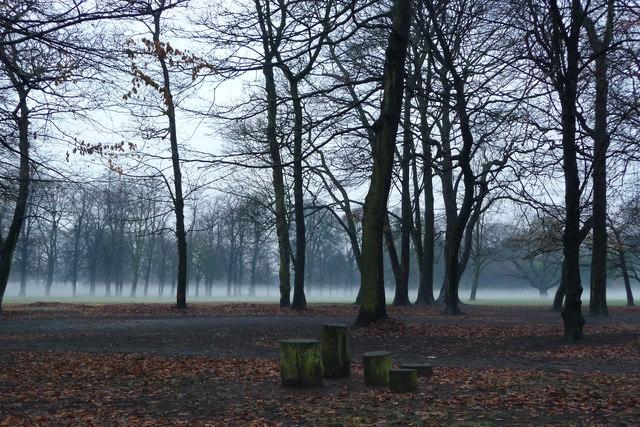 Mist in Longford Park, Stretford