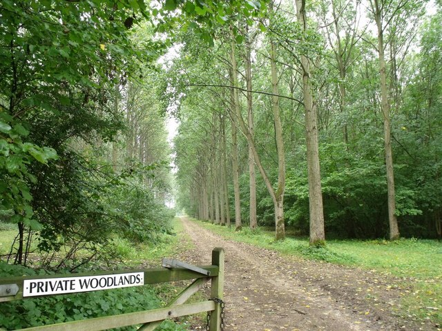 Entrance to Fulsby Wood