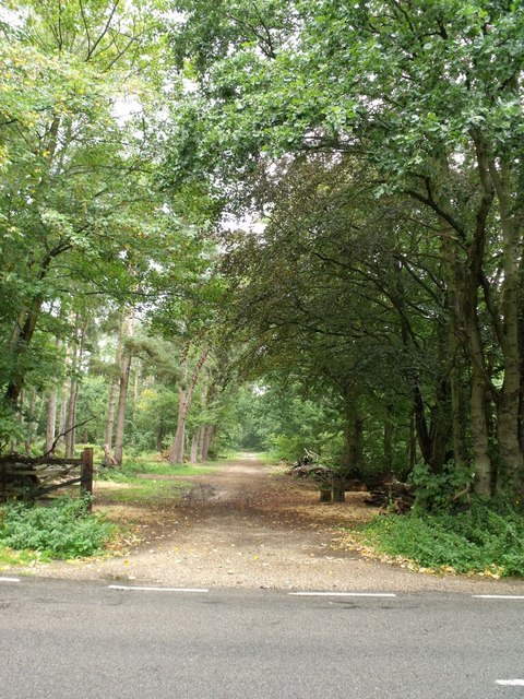 Southern Entrance to Fulsby Wood