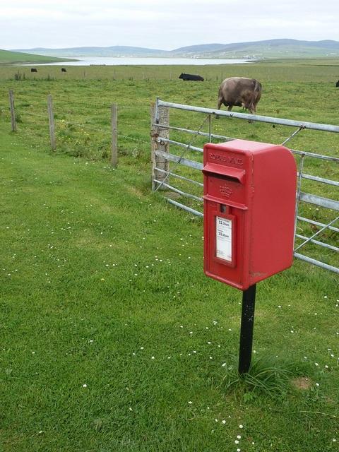 Quholm: postbox № KW16 6