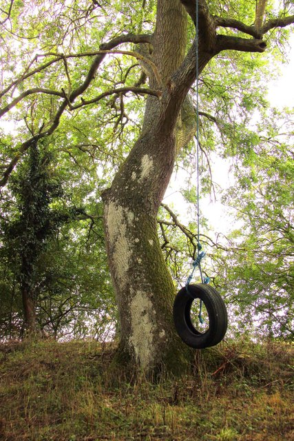 Tyre swing by the former canal