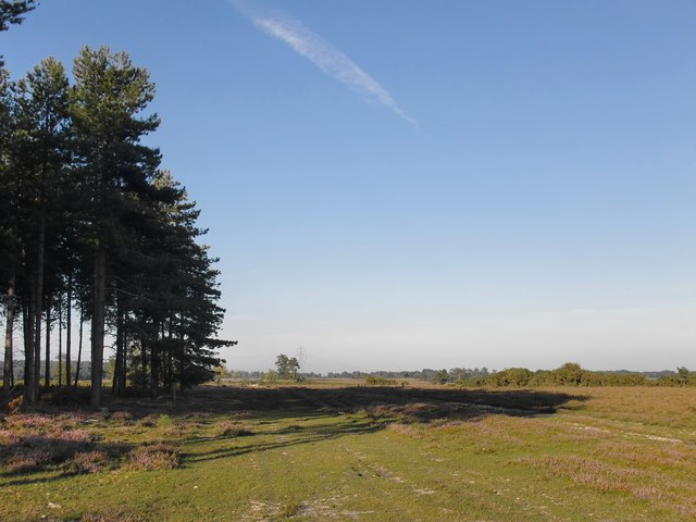 The view from Turf Hill Inclosure, New Forest