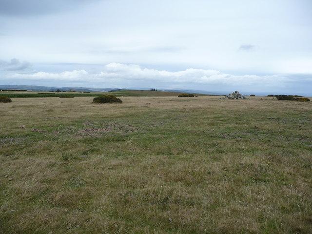 On Hergest Ridge