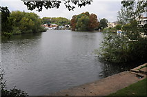 TQ0866 : The Thames at Lower Halliford by Philip Halling