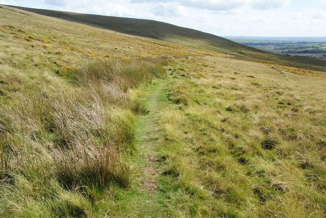 Path to Dan-y-garn