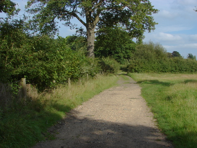 Fox Way, Merrist Wood