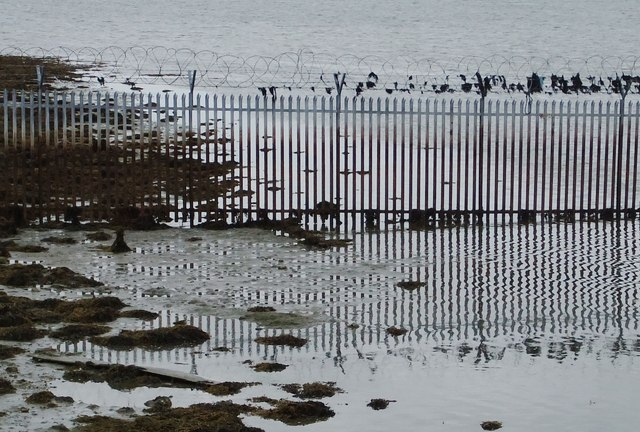 Fence and reflection, Wickor Point