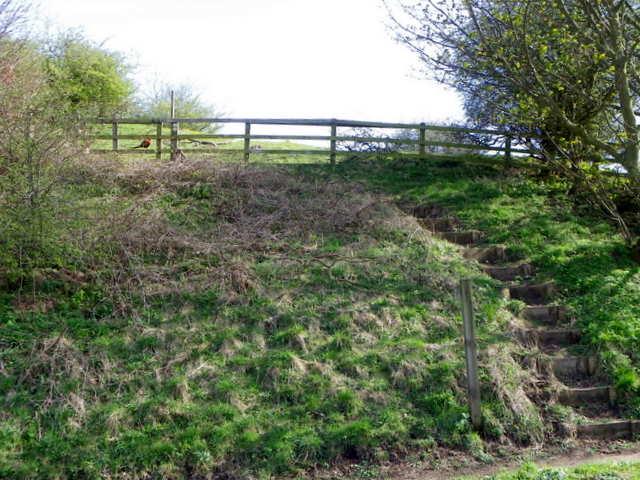 Steps near Alnmouth