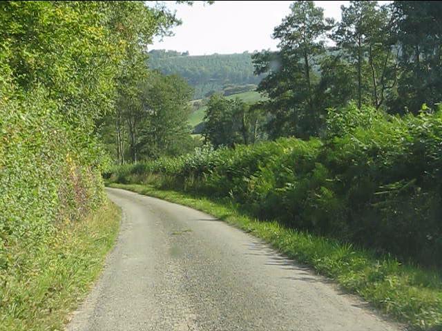 Lane near Lower Yield