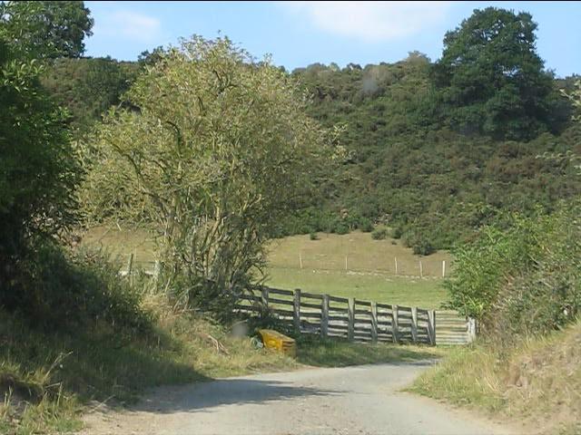 Lane near Pritchard's Wood