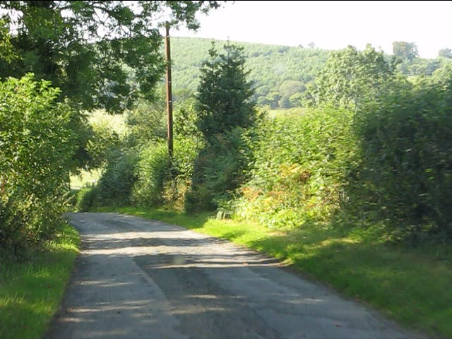 Country lane north of Willey Oak