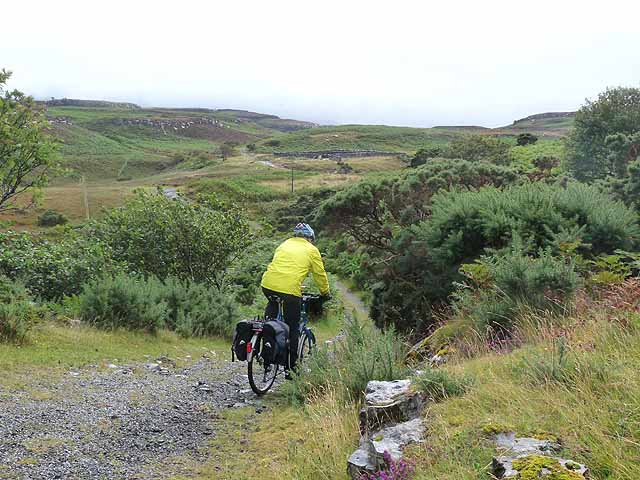Rough cycling on Ulva