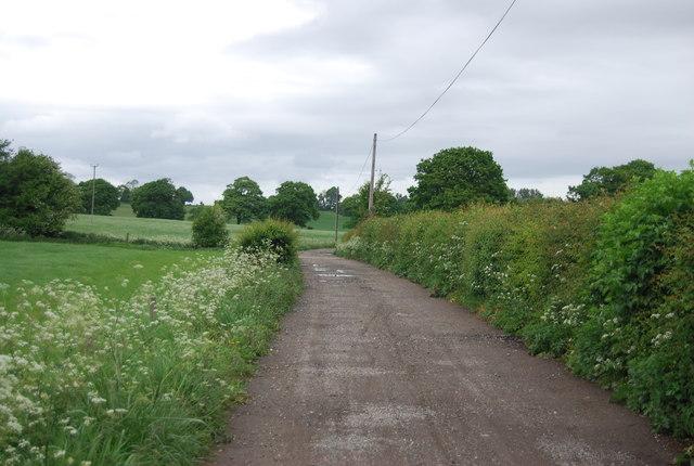 Wyckham Lane / Downs Link