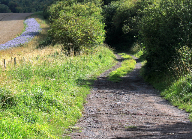2011 : End of the road and start of the track