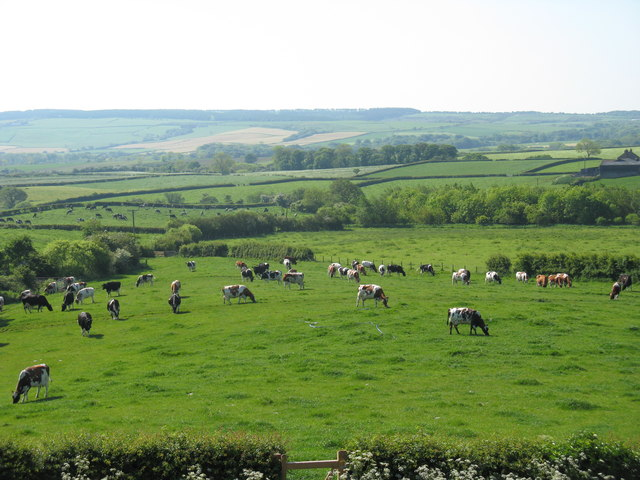 View from farm shop