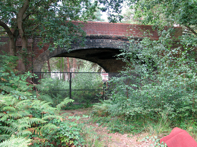 Bridge over disused railway line, Mintlyn