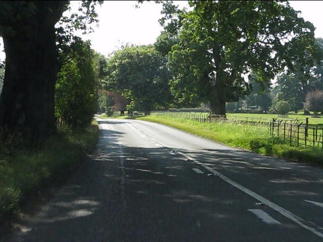Tree-lined approach to Lyonshall on the A44