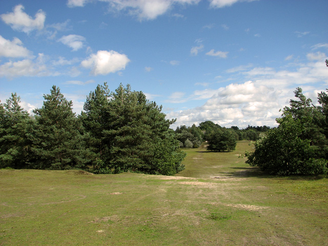 Wide views in Bawsey Country Park