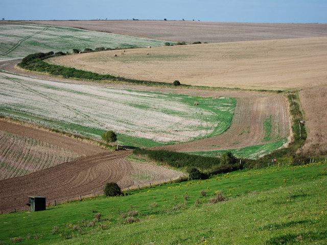 Farmland at Tenant Hill