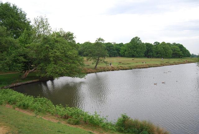 Pen Ponds (northern), Richmond Park