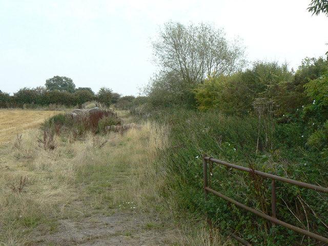 Boundary hedge