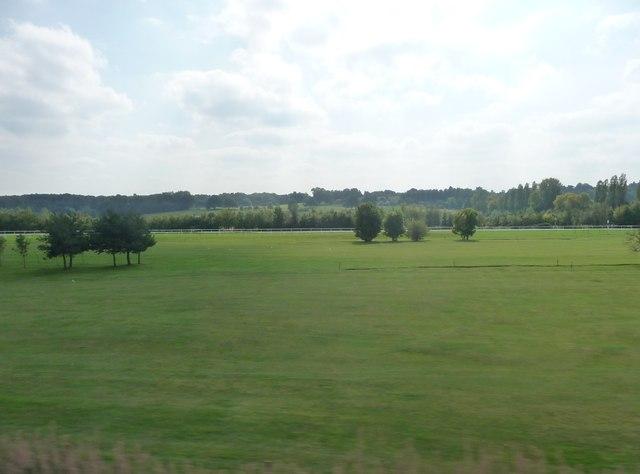 Newbury : Newbury Racecourse & Golf Course