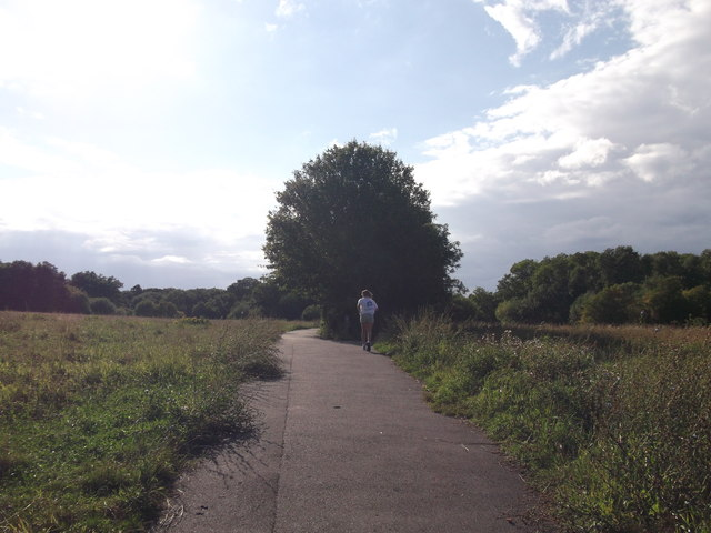 Path in Jubilee Country Park